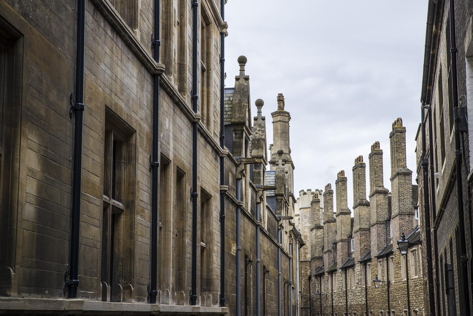 Cambridge Chimneys, Bill Ward