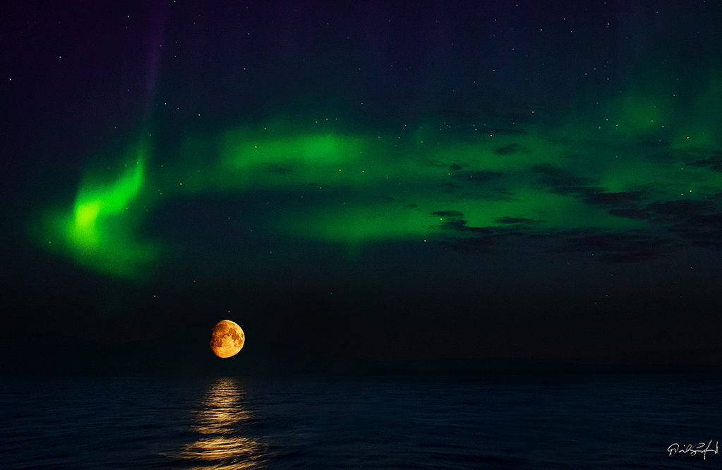 Aurora Moonrise, Dave Sandford