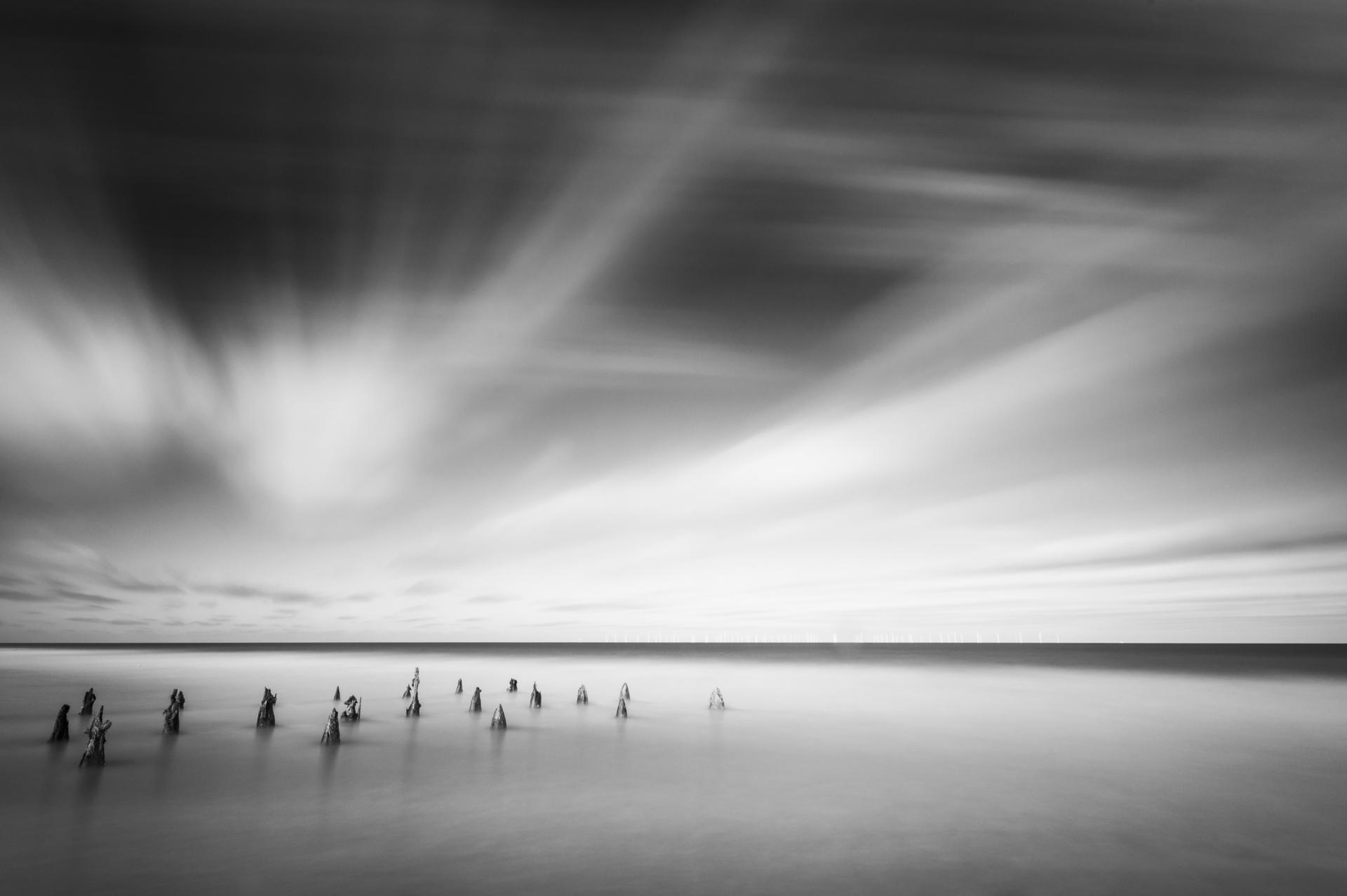 Onwards, My Little Creatures, Onwards © Bill Ward Photography
