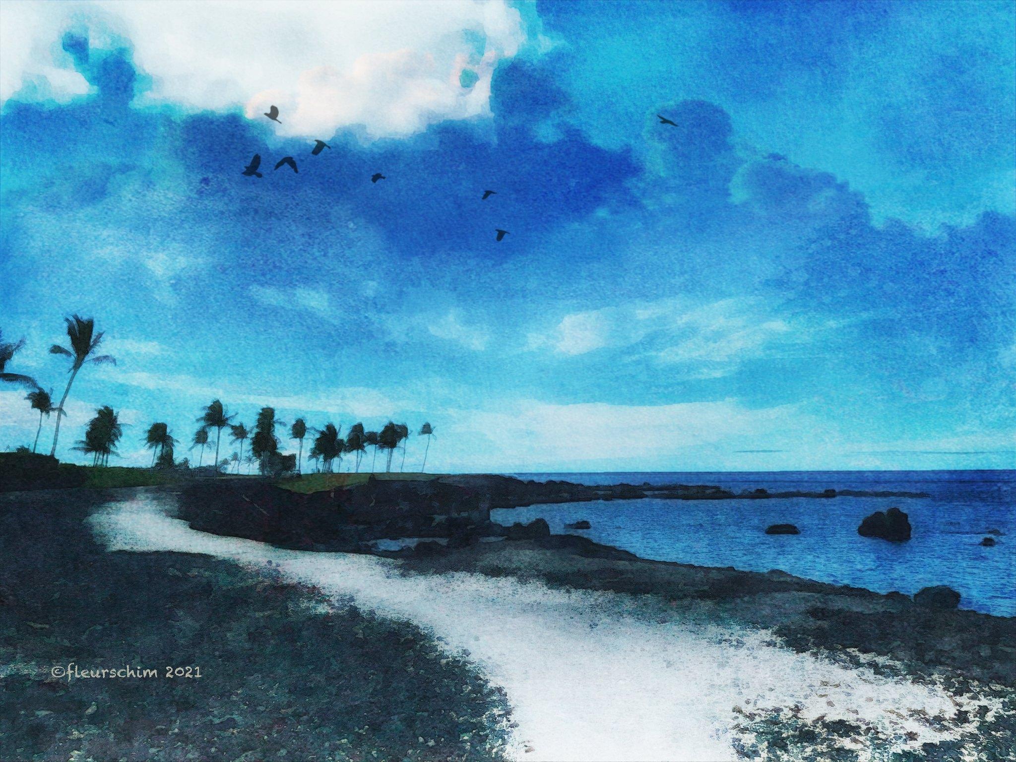 Postcards from Hawaii © Fleur Schim
